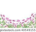 chinese milk vetch, flower, flowers 40549155