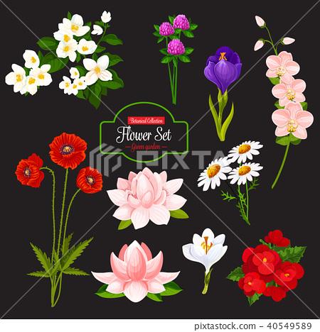 Flower cartoon icon of blooming garden plant 40549589