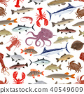 fish seafood pattern 40549609