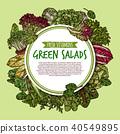 salad vegetable sketch 40549895