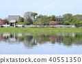 Tatebayashi City Azalea Oka Park Shironuma和Yoshinagashi 40551350