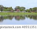 Tatebayashi City Azalea Oka Park Shironuma和Yoshinagashi 40551351