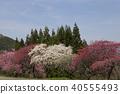 풍경, 경치, 자연 40555493
