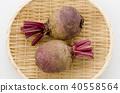 甜菜 打敗 糖蘿蔔 40558564