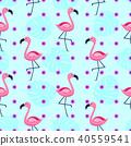flamingo, vector, pattern 40559541