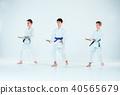 aikido, sport, training 40565679