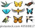 Collection of colorful butterfly insects and birds. Entomological symbol of freedom. Engraved hand 40569817