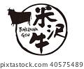 komezawa beef, cow, cattle 40575489