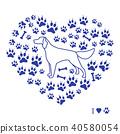 dog, setter, footmark 40580054