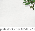 背景白色牆壁葉子 40580573