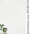 배경 - 흰 - 잎 40580744