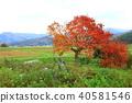 토노의 풍경 秋景色 40581546