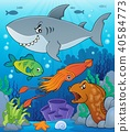 ocean, sea, fish 40584773