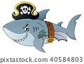 Pirate shark topic image 4 40584803