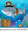 Pirate shark topic image 5 40584805