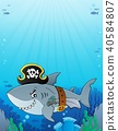 Pirate shark topic image 6 40584807