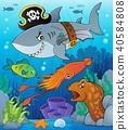 Pirate shark topic image 7 40584808