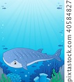 Whale shark theme image 1 40584827