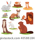 Forest animals vector cartoon animalistic characters squirrel in hollow and wild beaver or bunny 40586184