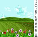 พื้นหญ้า,ทุ่งนา,นา 40596451