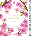 Cherry flowers Vector. Spring card backgrounds 40596456