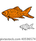 orange fish vector illustration sketch doodle  40596574