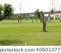골프, 코스, 페어웨이 40601077