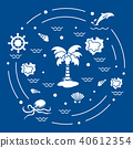 octopus island dolphin 40612354