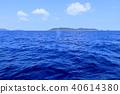 humpback, whale, hair 40614380