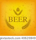 beer lager beers 40620849