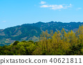 풍경, 경치, 산 40621811
