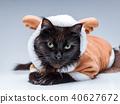 Photo of black cat in deer suit 40627672
