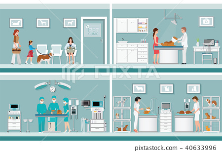 Pet care with veterinary in pet clinic. 40633996