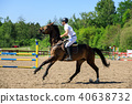 Horse rider is jumping over obstacles 40638732