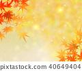 단풍, 가을, 잎 40649404