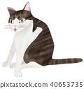 手绘 猫 猫咪 40653735