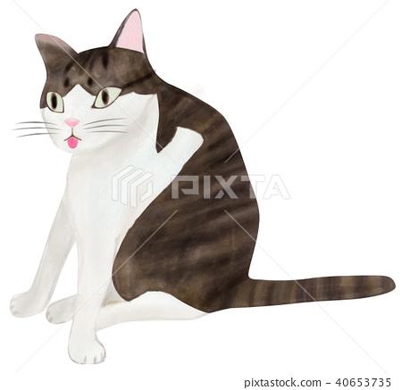 手繪 貓 貓咪 40653735