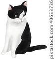 手绘 猫 猫咪 40653736
