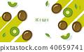 fruit green kiwi 40659741