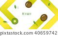 fruit green kiwi 40659742