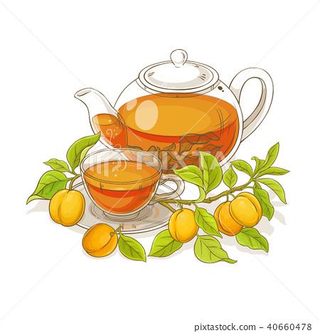 apricot tea illustration 40660478