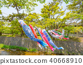 A carp streamer swimming in Mukawa river 40668910