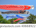 A carp streamer swimming in Mukawa river 40668922