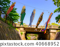 carp streamer, japanese carp-shaped windsock, shukugawa 40668952