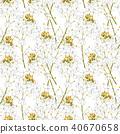 Watercolor horseradish flowers. Seamless pattern. Botanical illustration of organic, eco plant 40670658