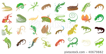 Lizard icon set, cartoon style 40679882