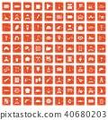 40680203