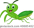 Cartoon praying mantis  40685402