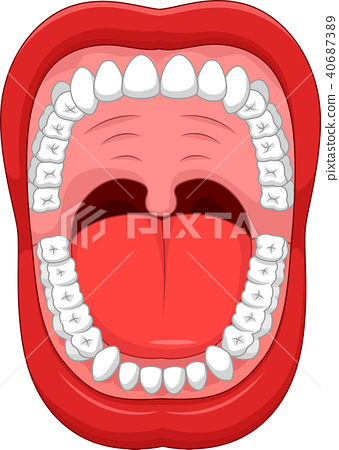 Parts of Human mouth. Open mouth and white healthy 40687389