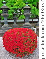 風景 自然 燈籠 40693652